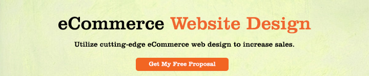 E Commerce Website Designing
